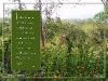 nature_002-640x480.jpg